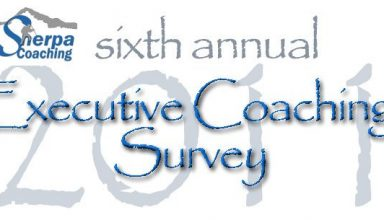 Executive Coaching Survey